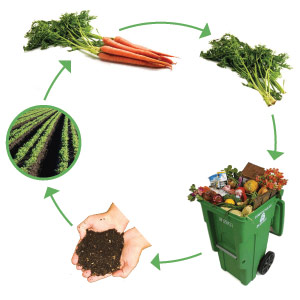 compost_cycle1