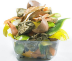 food scraps for compost   Google Search