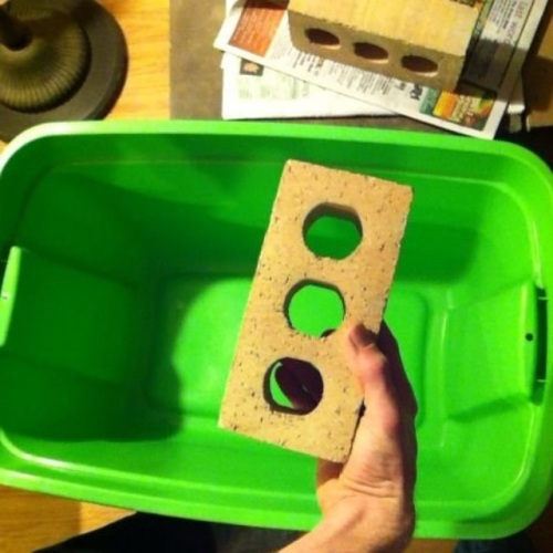 Building your own worm bin for at home composting.